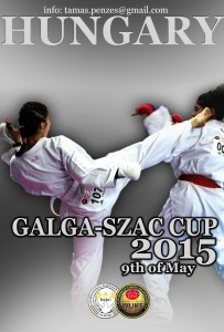 GSzCup_2015