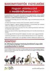 Hogya védekezzünk a madárinfluenza ellen